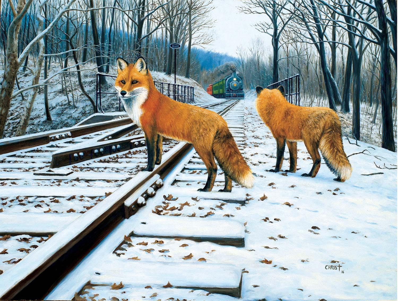 Fox Tracks 300