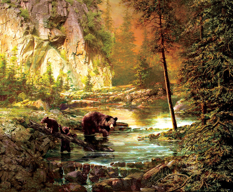 Bearly Daylight