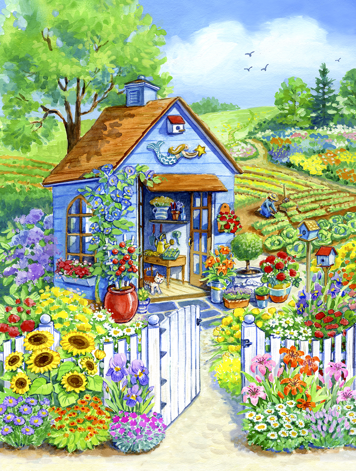 Path to the Garden Shed 1000