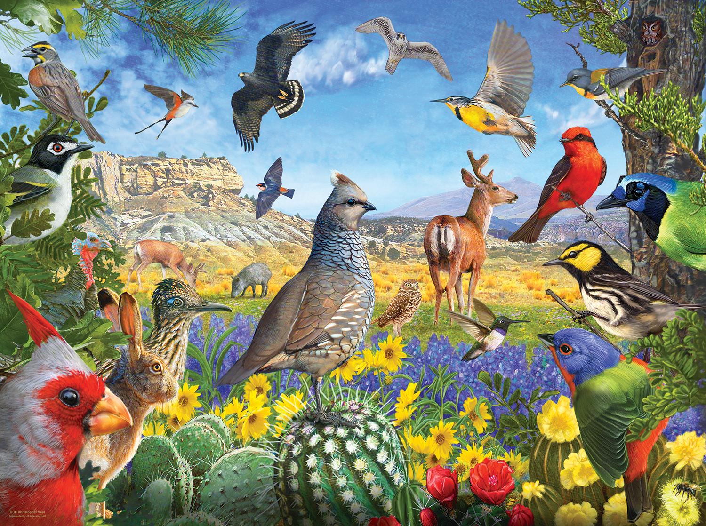 Texas Birds 1000
