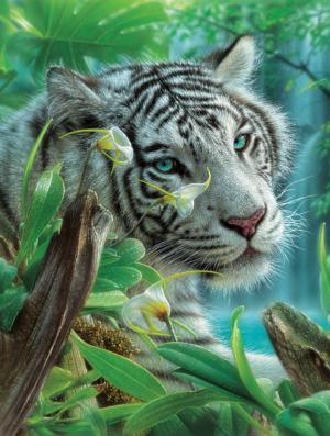 The White Tiger of Eden 300