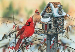 Cardinal's Rustic Retreat