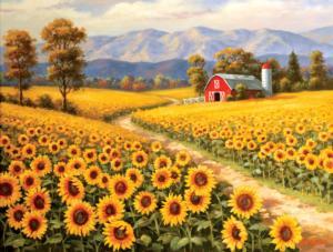 Red River Sunflower Farm 300