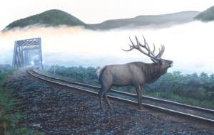 Elk Tracks 550