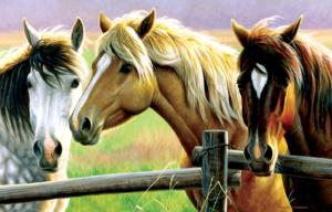 Horse Fence 1000