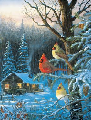 Cardinals Cabin Fever