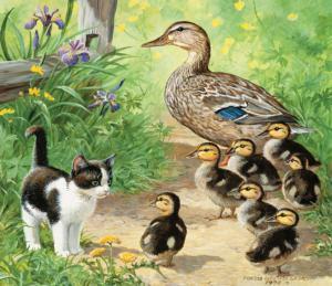Ducks and Friend