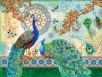 Royal Peacocks