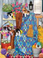 Porch Kittens
