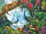 Peacock and Leopards