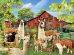 Six Llamas 300