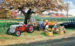 Roadside Harvest