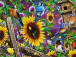 Fenceline Birds
