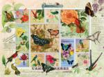 Butterfly and Hummingbird Flight