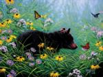 Black Bear and Butterflies