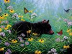 Black Bear and Butterflies