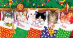 Stocking Kittens